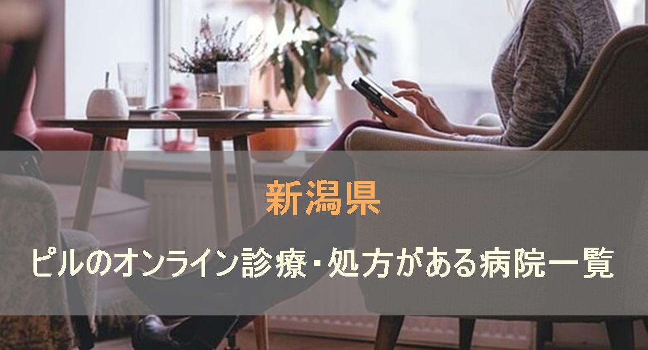 低用量ピルやアフターピルのオンライン処方があるおすすめの病院を新潟県で検索します